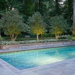 Nice Pool with Grey-Green Brazilian slate